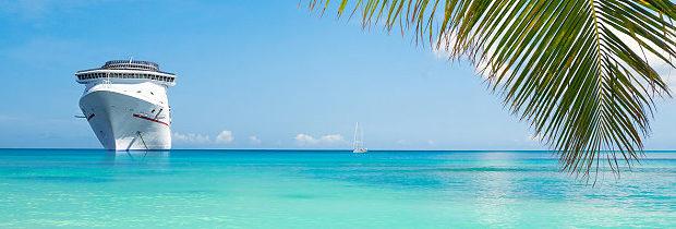 Kreuzfahrtschiff und Palmenblatt